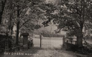 Haygreen Marsden.jpg