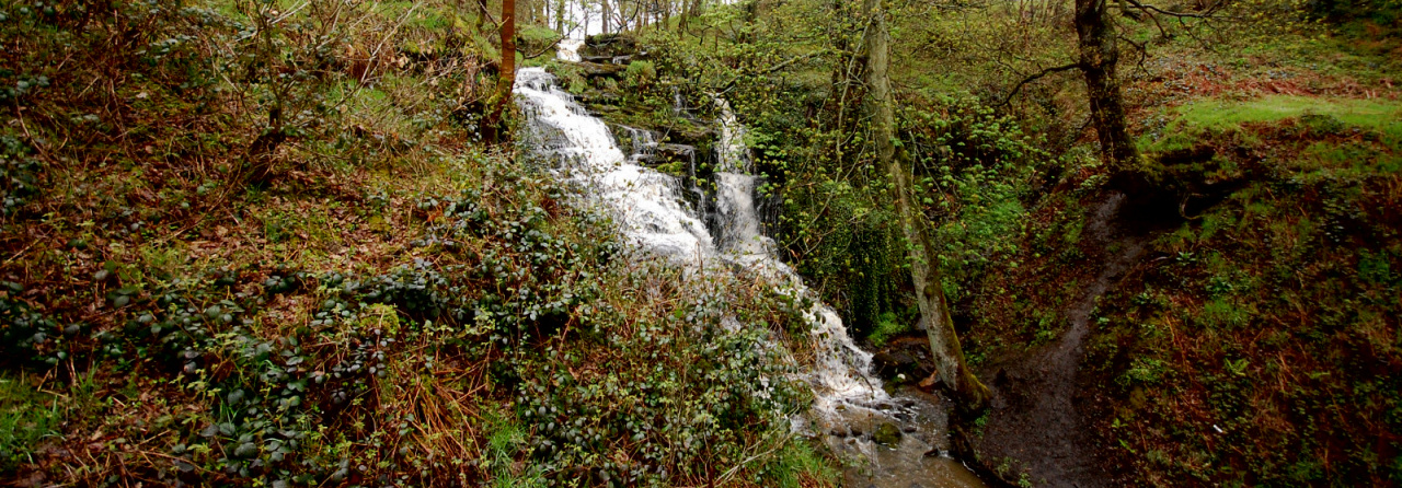 Photograph of Folly Dolly Falls taken in May 2015