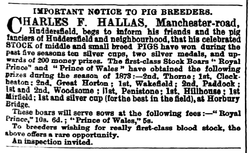 File:Huddersfield Chronicle 18 October 1873 - Important Notice to Pig Breeders.png